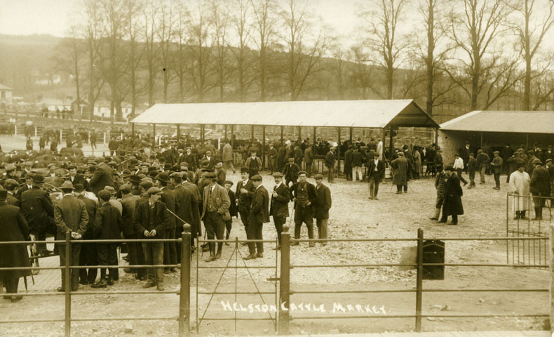 Photographic postcard of Helston cattle market on market day, about 1920.  The weekly cattle market, which was traditionally held on a Monday, was one of the biggest agricultural markets in the area.  In addition to providing the opportunity to buy and sell livestock, it was also an important social event for farmers and their families.  Photograph by A H Hawke of Helston.